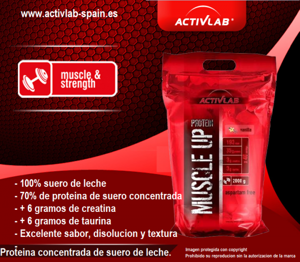Activlab España, Muscle up protein (2000 gr).